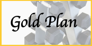 goldplanlogo