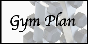 gymplanlogo
